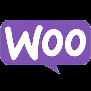 WooCommerce eCommerce Marketing Strategy and Optimization